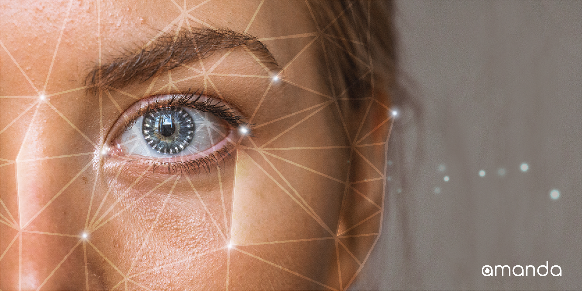 Face The Future: A Brief Introduction of Amanda AI